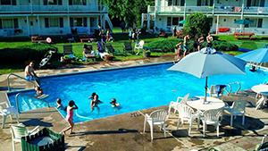 summer-pool